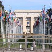 ONU Ginebra ACN
