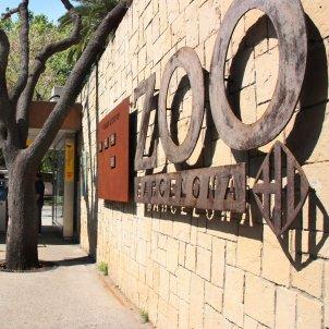 Zoo Barcleona ACN