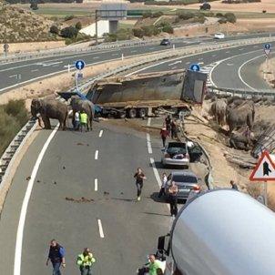 Elefants Albacete Europa press