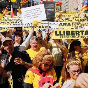 Manifestació per les llibertats Sergi Alcàzar (2)