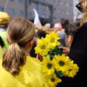 flors grogues manifestacio mc