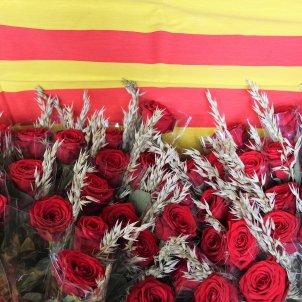 Sant Jordi Roses bandera catalunya ACN