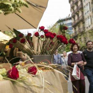Sant Jordi roses - Sergi Alcazar