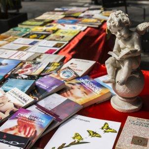 Sant Jordi llibres - Sergi Alcazar