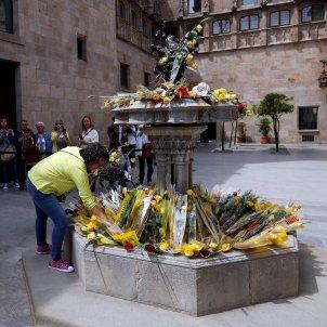 Roses grogues Sant Jordi presos polítics Generalitat - Efe