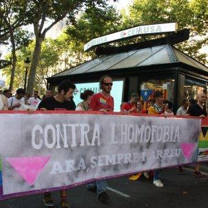 Homofobia ACN