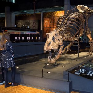 Visitants a l'eposició T rex CosmoCaixa