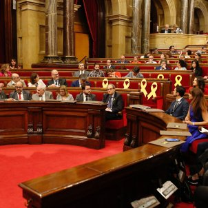 Ple parlament Sergi Alcàzar