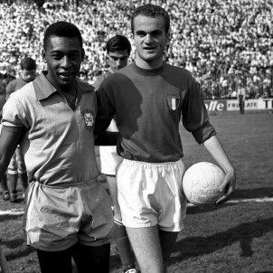 Brasil Pelé CC