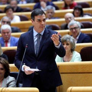 Sánchez  senat Efe