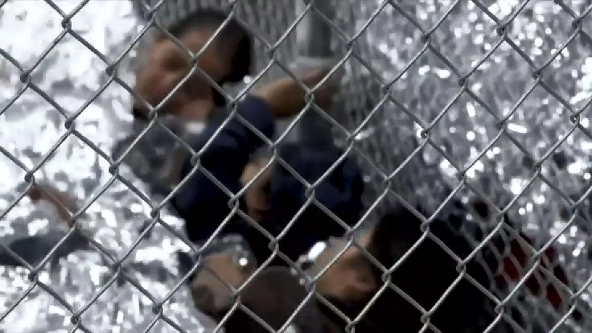 Nens immigrants EUA