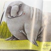 gran llibre animals francesca cosanti roberto lazaro