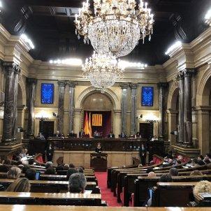 ple parlament ML
