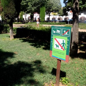 plaça sense gossos Girona ACN 2018