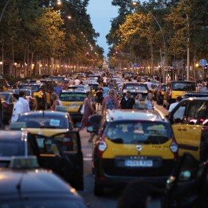 vaga taxistes barcelona c palacio