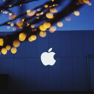 apple - pixaby