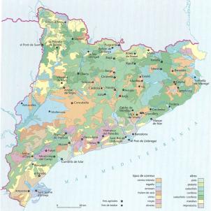 Test 4. L'agricultura i la ramaderia catalanes. Mapa agrari català. Font Enciclopedia