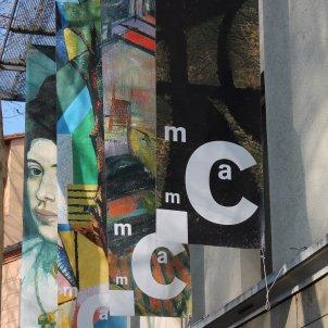Musée d'art moderne de Céret Robin Townsend