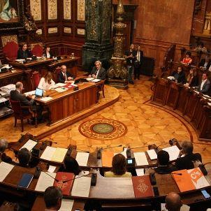Ple Ajuntament ACN (2)