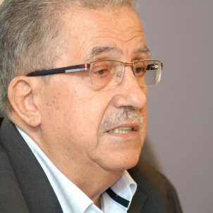 Josep Fontana wikipedia