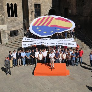 Ciutadans pla gerneral Diada   Carles Palacio