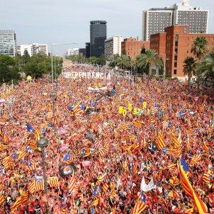 manifestació Diada Diagonal Sergi Alcazar