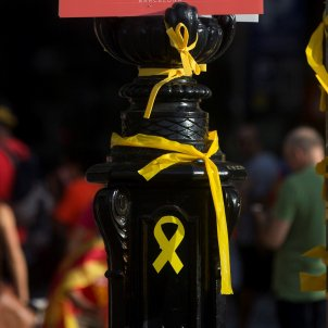 llacos grocs manifestacio diada efe