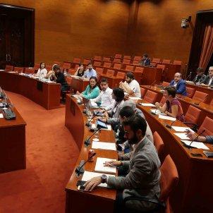 Comissió parlament