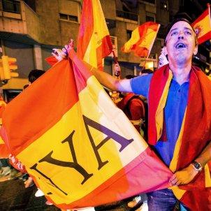 manifestació bandera espanyola efe
