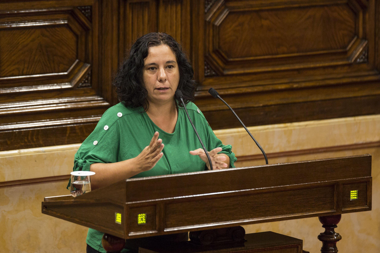 Ple Parlament Susana Segovia Comuns - Sergi Alcazar
