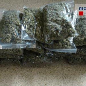 marihuana @mossos