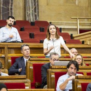 Levy PPC Albiol Reglament ple comisio drets civils i politics - Sergi Alcazar