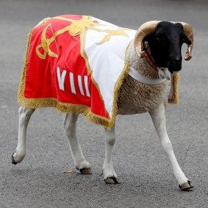 cabra legio hispanitat desfilada militar efe
