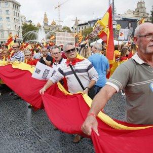 12-O Hispanitat Espanyolisme unionisme bandera - Sergi Alcàzar