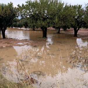 camp inundat pluges arnes meteorologia acn