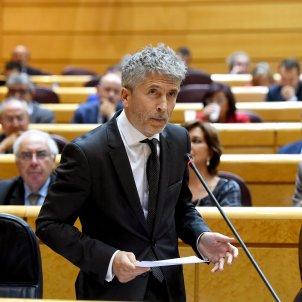 Ministre Interior Fernando Grande-Marlaska Senat - Efe