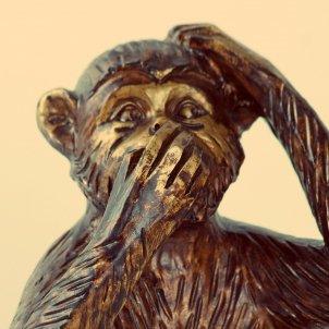 Silenci mico (Pxhere)