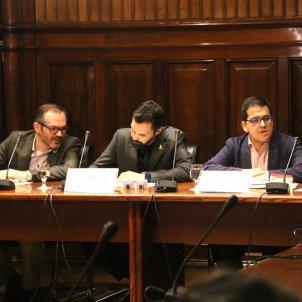 Comissió reforma reglament - ACN