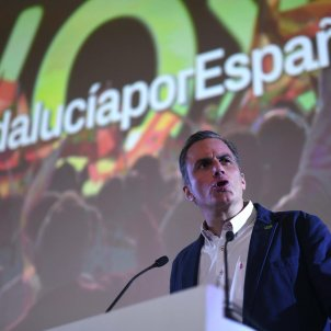 ortega smith vox - efe