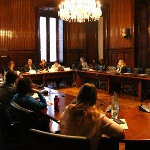 comissió d'investigació sobre l'aplicació de l'Article 155 a Catalunya, el 4 de desembre de 2018. (Horitzontal) - ACN