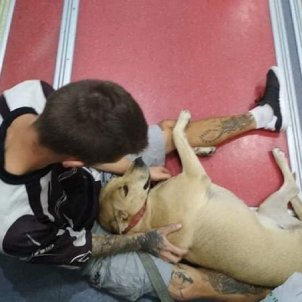 perro muerto Guardia Urbana Barcelona