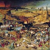 Test 43. La Pesta Negra a Catalunya (1348)