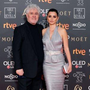 Premios Goya 2019 EFE Pedro Almodovar