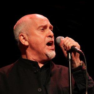 Peter Gabriel Wikimedia Commons   Skoll World Forum