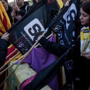 vaga general 21F girona banderes sepc -bona qualitat- Carles Palacio
