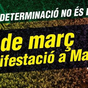 Manifestacio Madrid