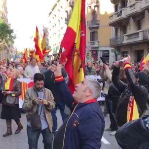 Manifestació espanyolista dia constitució-Ferran Vila
