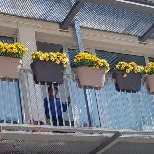 ajuntament premia de dalt flors grogues  EN
