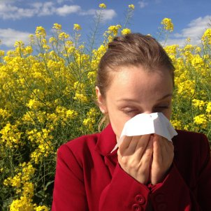Alergia PxHere