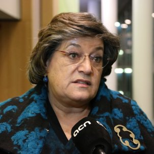 Ana Gomes eurodiputada ACN